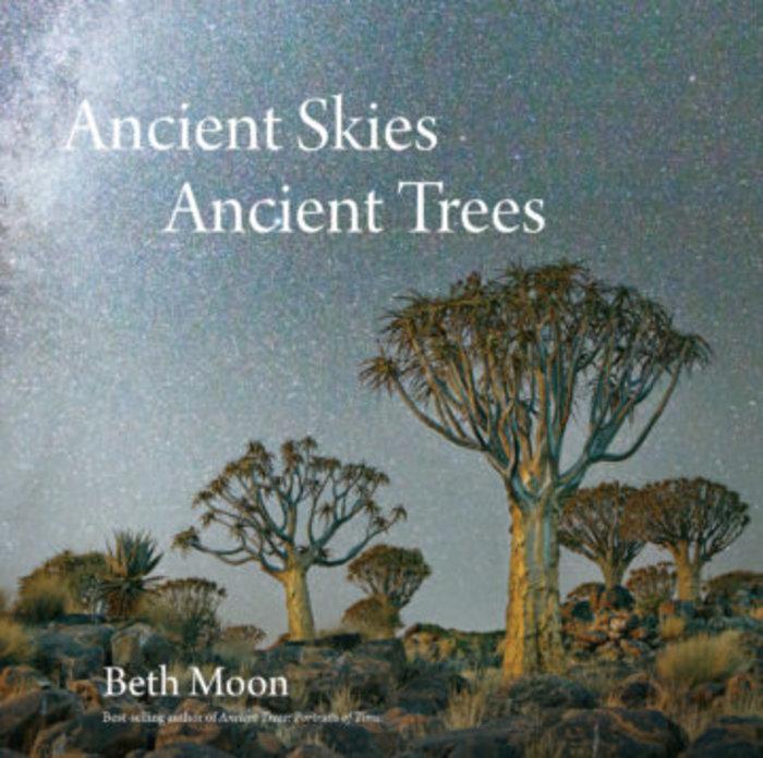 Μαγευτικές εικόνες των πιο ηλικιωμένων δέντρων του κόσμου