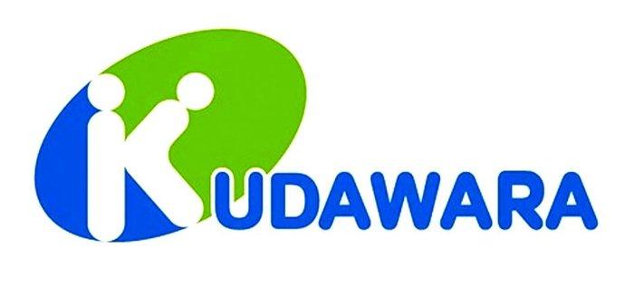Η ιαπωνική φαρμακευτική εταιρεία Kudawara αποφάσισε να παίξει με την αγγλική αλφάβητο στο λογότυπό της, αλλά οι κουκίδες μετατράπηκαν «σε ένα πρόστυχο γρήγορο σεξ»