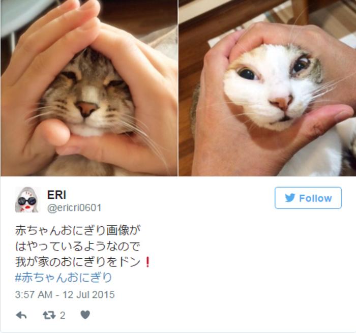 Ιαπωνική φρενίτιδα: Γονείς συμπιέζουν τα πρόσωπα των παιδιών τους - εικόνα 8