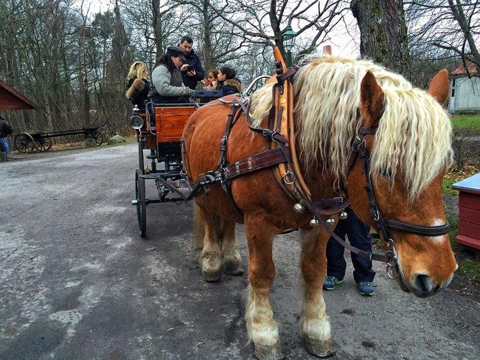 Αύρα Χριστουγέννων πλημμύρισε τη μαγευτική Στοκχόλμη! [Εικόνες] - εικόνα 23