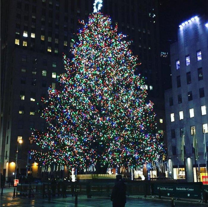 Χριστούγεννα στο Rockefeller:Νύφες, σκυλάκια, γαλλικά φιλιά σε μαγικό φόντο - εικόνα 2