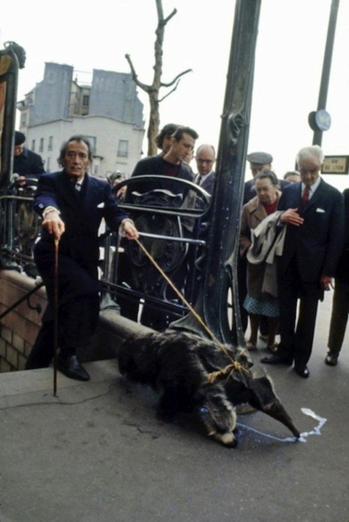 Παρίσι 1969: Ο σουρεαλισμός βγήκε βόλτα στην πόλη του φωτός. Ο Σαλβαντόρ Νταλί μαζί με τον μυρμηγκοφάγο του.