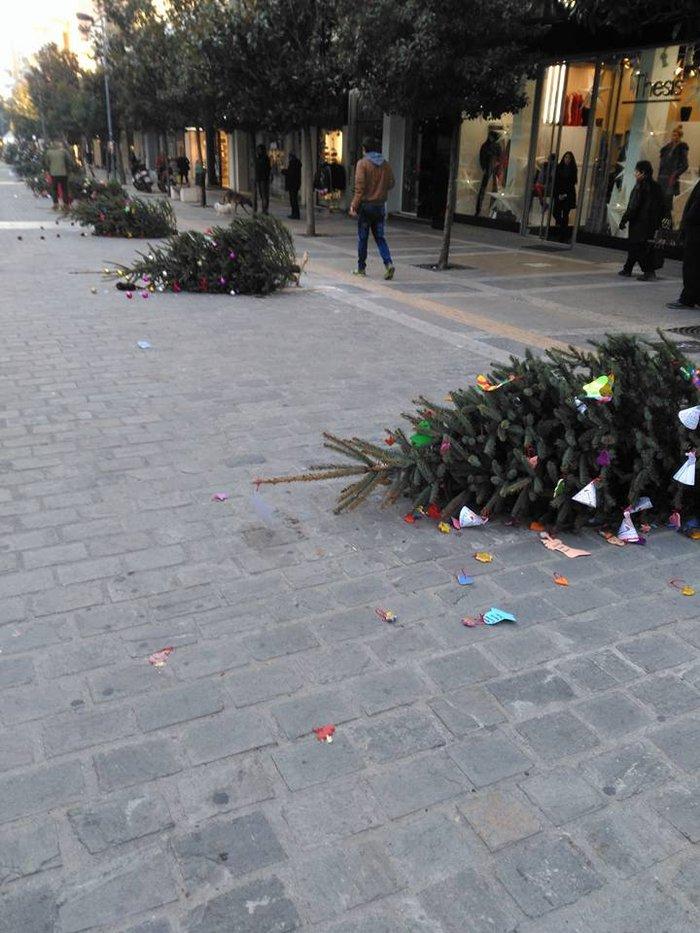 Η σπάνια περίπτωση του αντιδημάρχου Σερρών και τα βανδαλισμένα δέντρα