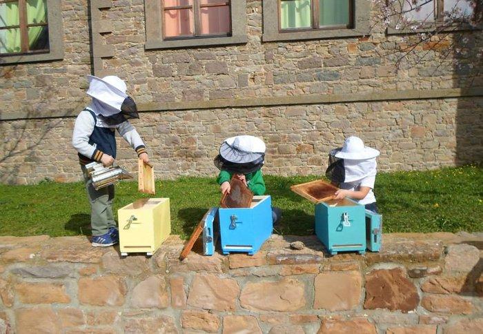 Οι μικροί μελισσοκόμοι του Δημοτικού Σχολείου Μούδρου στη Λήμνο ανακαλύπτουν τα μυστικά της κοινωνίας των μελισσών και παράλληλα μαθαίνουν Αγγλικά.