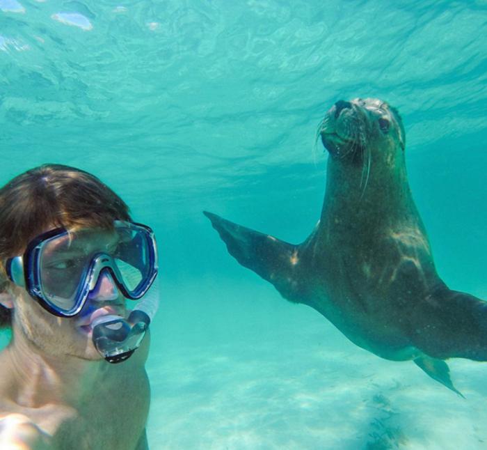 Αυτός είναι ο βασιλιάς των selfie: Φωτογραφίζεται με ζώα - εικόνα 10