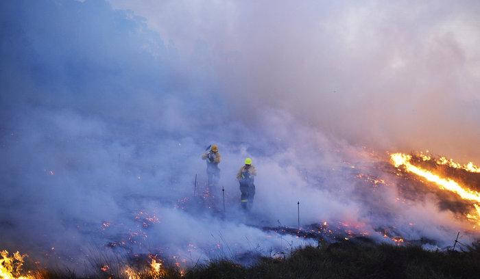 Πυρκαγιές σε δάση της Ισπανίας στην καρδιά του χειμώνα - εικόνα 3
