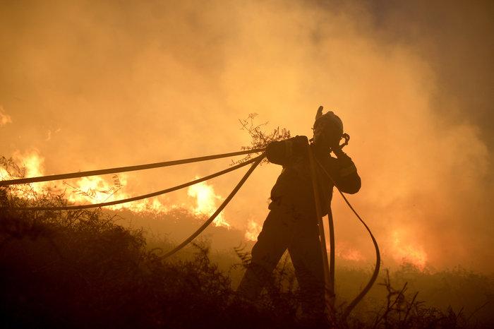 Πυρκαγιές σε δάση της Ισπανίας στην καρδιά του χειμώνα - εικόνα 7