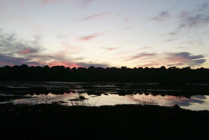 Ηλιοβασίλεμα στο δάσος της Στροφυλιάς στον Άραξο - εικόνα 2