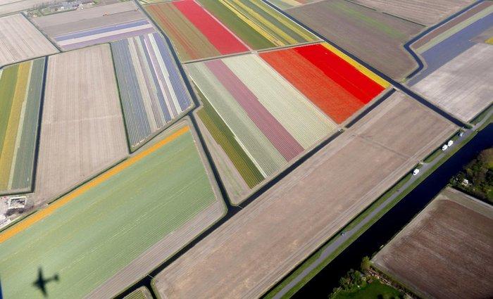 """Ο λεγόμενος """"κήπος της Ευρώπης"""", μια τεράστια έκταση με ανθοκαλλιέργειες στην Ολλανδία"""