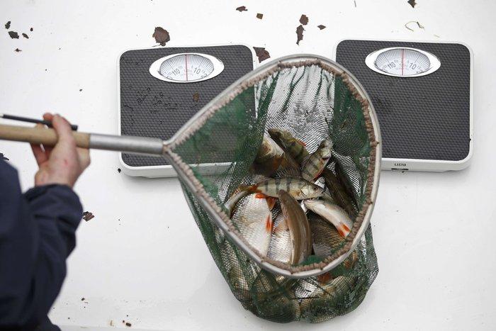 Δείτε τι βρήκαν δύτες στην κοίτη ποταμού στη Γαλλία - εικόνα 11
