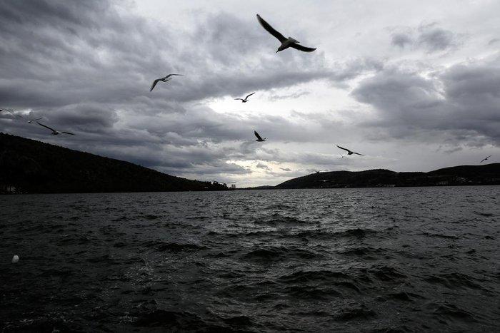 Μαγευτικές εικόνες από τη λίμνη της Καστοριάς