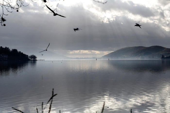 Μαγευτικές εικόνες από τη λίμνη της Καστοριάς - εικόνα 18