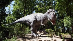 Οι δεινόσαυροι...χόρευαν για να κερδίσουν το ταίρι τους