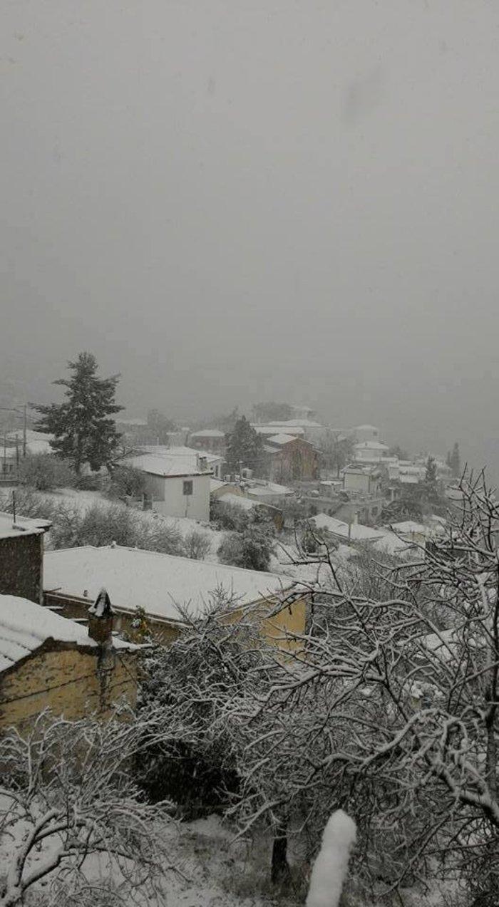 Σκόπελος: Yiannis Chatzitrakosas via Μetar.gr