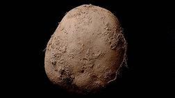 mia-patata-aksias-1000000-eurw