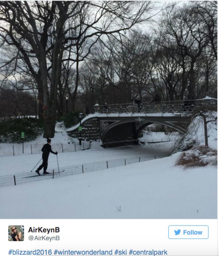 Σκι μέσα στην πόλη της Νέας Υόρκης; Κι όμως γίνεται! - εικόνα 4