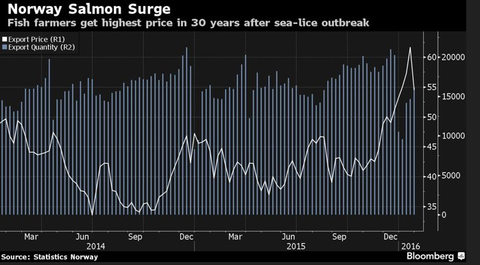 Bloomberg: Σε υψηλά 30ετίας οι τιμές του σολομού, ρεκόρ πωλήσεων στο σούσι! - εικόνα 2