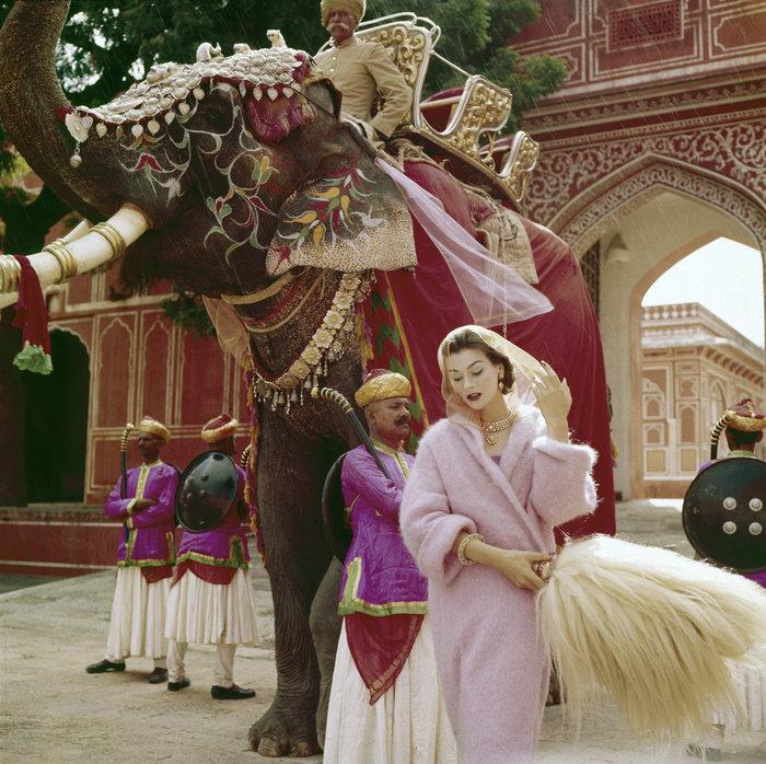 Νόρμαν Πάρκινσον, φωτογράφιση στην Ινδία