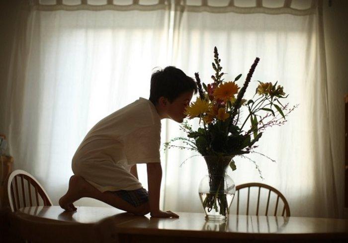 Ανακαλύπτοντας τον απίστευτο κόσμο ενός αυτιστικού παιδιού - εικόνα 6