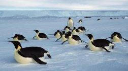 stin-antarktiki-to-megalutero-thalassio-parko-ston-kosmo