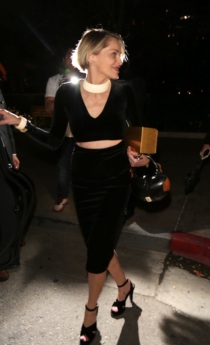 Η Σάρον Στόουν φόρεσε το πιο εφαρμοστό βελούδινο φόρεμα και ήταν υπέροχη - εικόνα 2