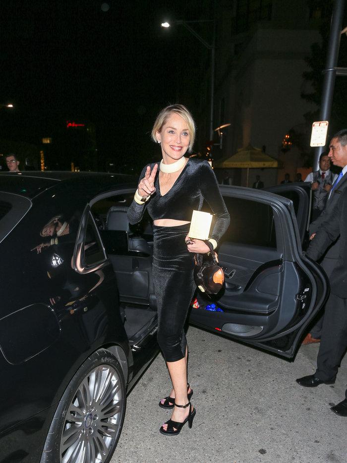 Η Σάρον Στόουν φόρεσε το πιο εφαρμοστό βελούδινο φόρεμα και ήταν υπέροχη