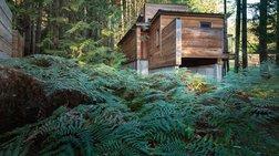 Ένα πανέμορφο καταφύγιο στη μέση του δάσους