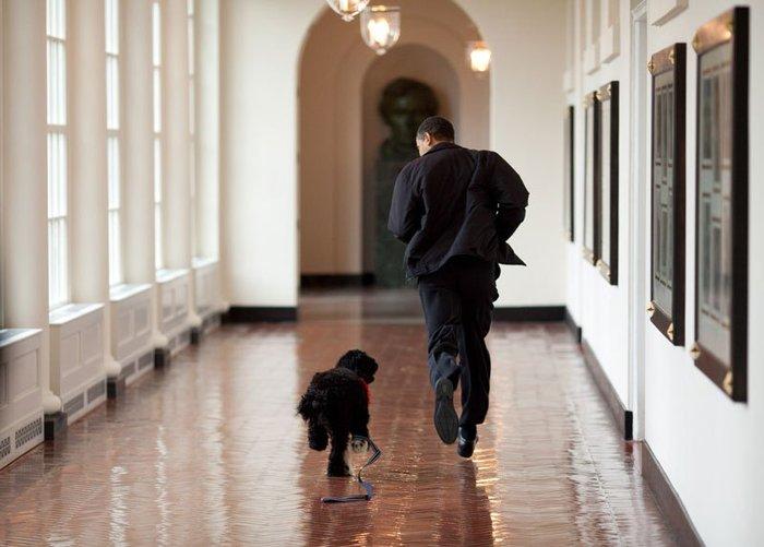 Οι 30 πιο απρόβλεπτες φωτογραφίες του Μπαράκ Ομπάμα - εικόνα 20