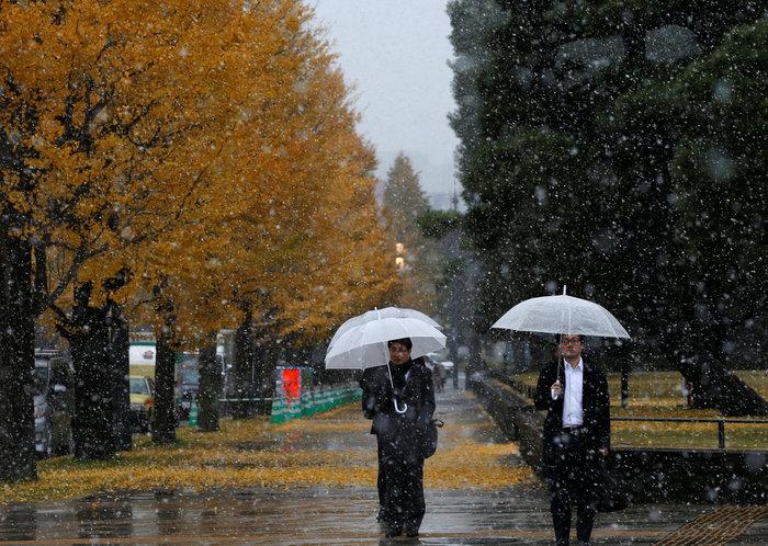 Χιονίζει Νοέμβριο στο Τόκυο για πρώτη φορά μετά από 54 χρόνια! - εικόνα 3