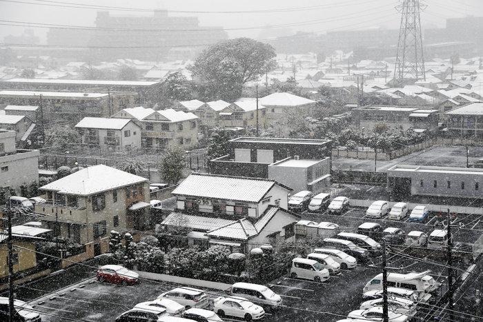 Χιονίζει Νοέμβριο στο Τόκυο για πρώτη φορά μετά από 54 χρόνια! - εικόνα 6