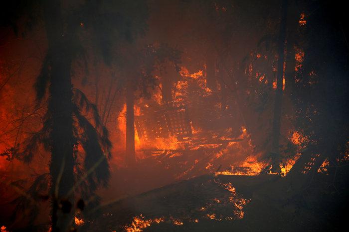 Ανελέητες οι φλόγες κατακαίνε ολόκληρες συνοικίες στη Χάιφα  - φωτό - - εικόνα 11