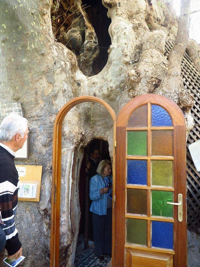 Παντού Ορθοδοξία: Το Εκκλησάκι της Παναγίας που βρίσκεται μέσα σε έναν τεράστιο πλάτανο! Πού θα το συναντήσετε; (Photos & Video)