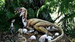 anakalufthike-oura-deinosaurou-se-dentro-ilikias-99-ekat-etwn