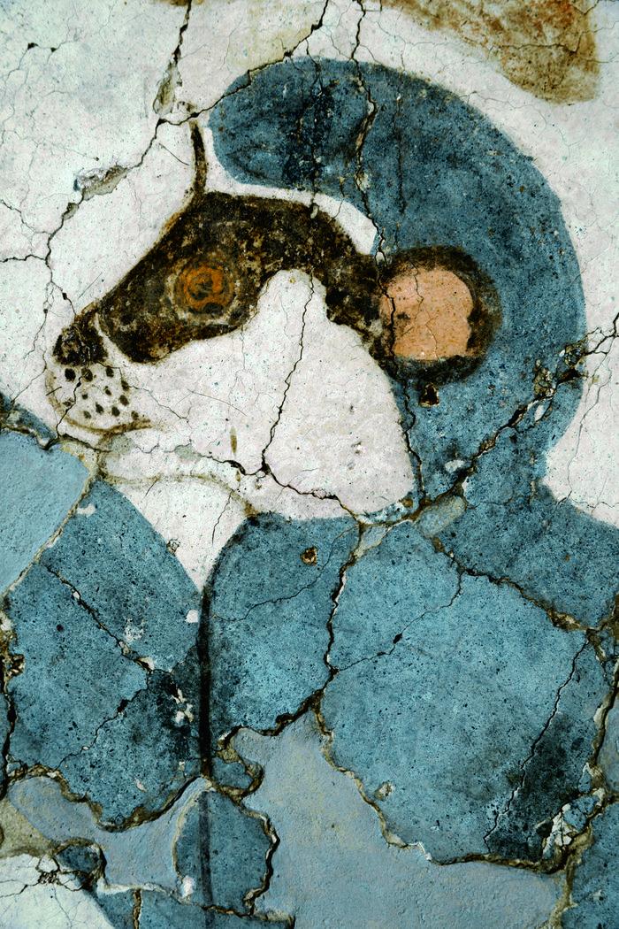 Λεπτομέρεια από την τοιχογραφία των πιθήκων.