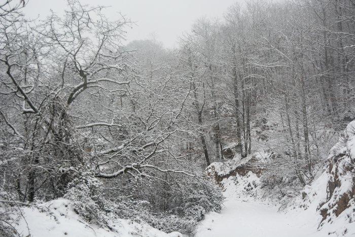 16 υπέροχες φωτογραφίες από την χιονισμένη Αρναία Χαλκιδικής - εικόνα 13