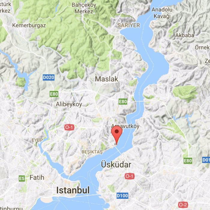 Μακελειό στην Κωνσταντινούπολη με 39 νεκρούς & 69 τραυματίες - εικόνα 4