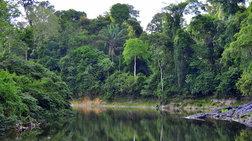 Βενεζουέλα: Ελικόπτερο με 13 επιβαίνοντες χάθηκε στη ζούγκλα του Αμαζονίου