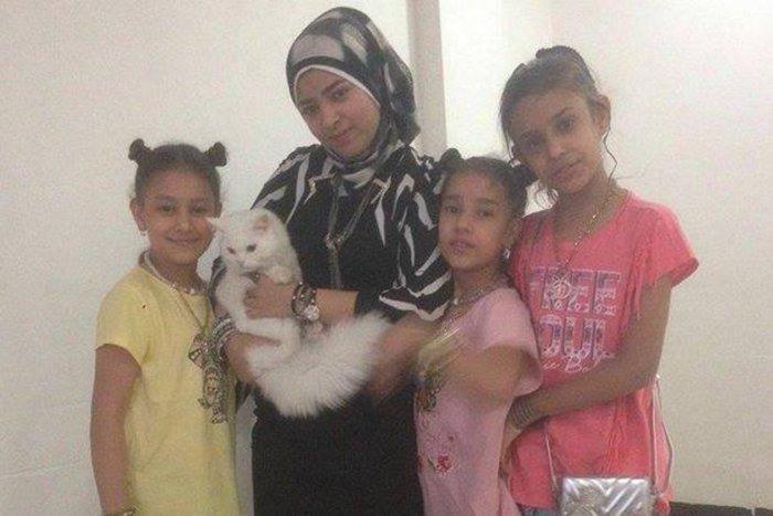 Η «Οδύσσεια» του γάτου-πρόσφυγα της Λέσβου έγινε παιδικό παραμύθι - εικόνα 5