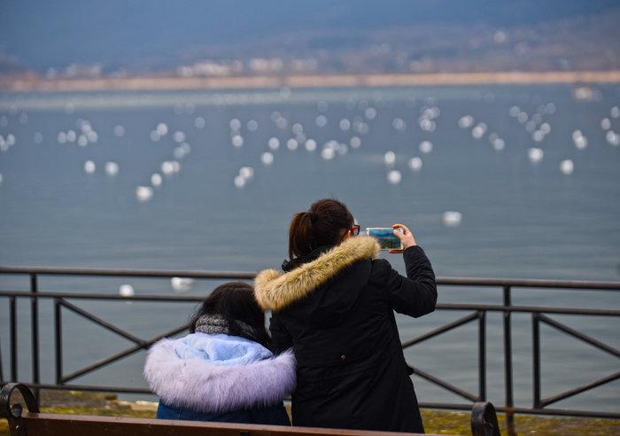 Mαγευτικές εικόνες από την πανέμορφη λίμνη Ιωαννίνων - εικόνα 2