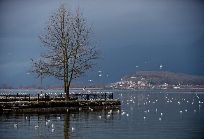 Mαγευτικές εικόνες από την πανέμορφη λίμνη Ιωαννίνων - εικόνα 3