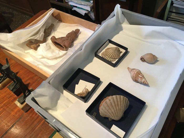 Η κρυφή και μυστηριώδης πλευρά του Εθνικού Αρχαιολογικού Μουσείου - εικόνα 21