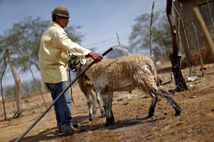 Η Βραζιλία στο έλεος της ξηρασίας που κρατάει εδώ και 5 χρόνια