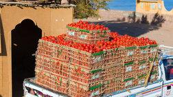 'Εξι τόνοι ντομάτες- δηλητήριο κατασχέθηκαν στον Πειραιά