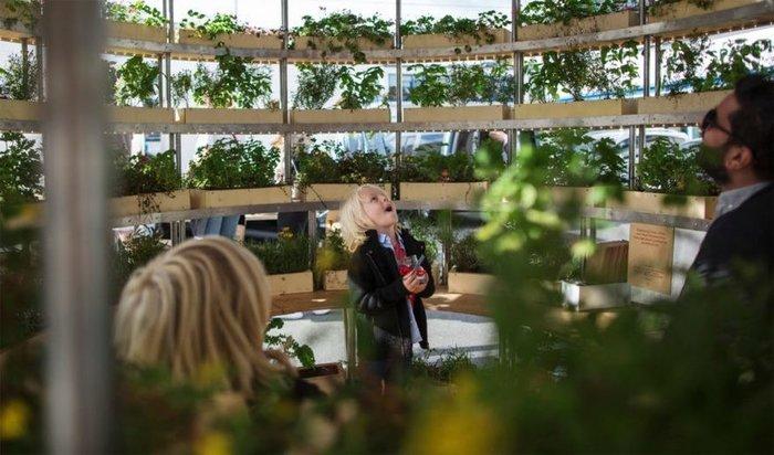 Φτιάξτε έναν ολάνθιστο κήπο με δωρεάν οδηγίες από την ΙΚΕΑ