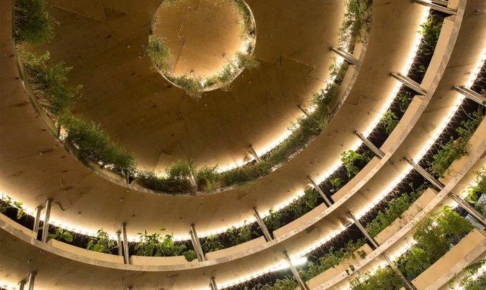 Φτιάξτε έναν ολάνθιστο κήπο με δωρεάν οδηγίες από την ΙΚΕΑ - εικόνα 2