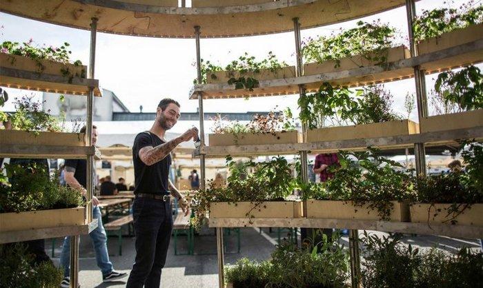 Φτιάξτε έναν ολάνθιστο κήπο με δωρεάν οδηγίες από την ΙΚΕΑ - εικόνα 3