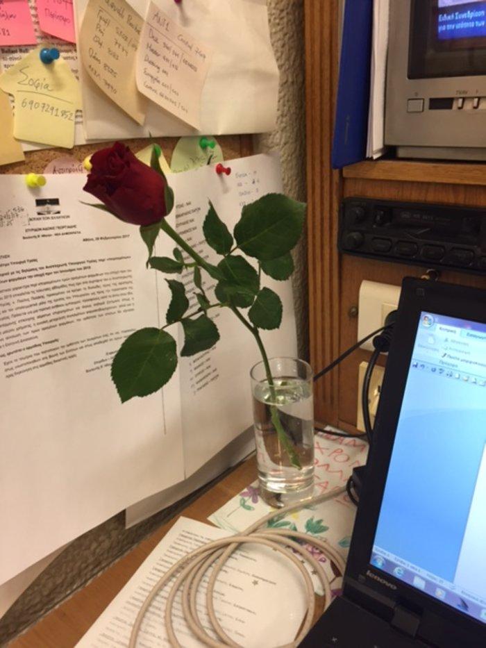 Ο Κουτσούμπας μοίρασε τριαντάφυλλα και έκλεψε καρδιές - εικόνα 2