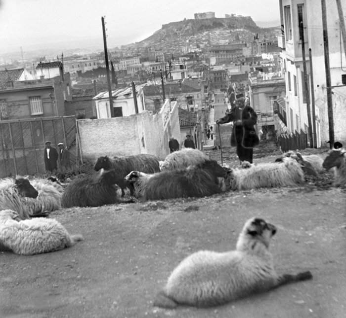Κατσικάδικα, Αλώνια: Από πού πήραν το όνομά τους οι συνοικίες της Αθήνας