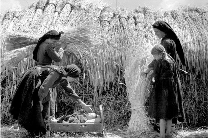 Γυναίκες στον θερισμό, Ήπειρος (1930). Αυτή η φωτογραφία της Nelly's συλλαμβάνει τη σύνθετη πραγματικότητα της ζωής των γυναικών. Βλέπουμε γυναίκες της Ηπείρου να βοηθούν στον θερισμό και ταυτόχρονα να φροντίζουν τα παιδιά τους. Για τις γυναίκες, πολύ περισσότερο από όσο για τους άντρες, δεν υπήρχε σαφής διάκριση ανάμεσα στις οικιακές και τις αγροτικές εργασίες.Nelly's και Τμήμα Φωτογραφικών Αρχείων Μουσείου Μπενάκη, με άδεια χρήσης.