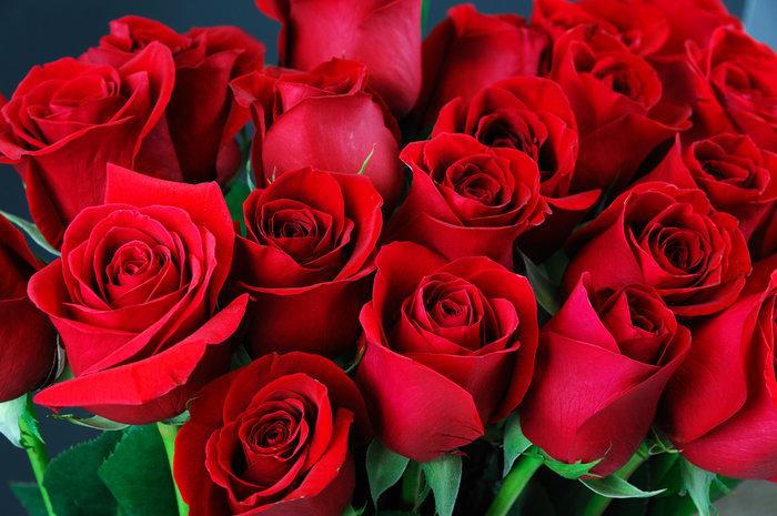 Μάθετε τους συμβολισμούς των λουλουδιών πριν τα χαρίσετε
